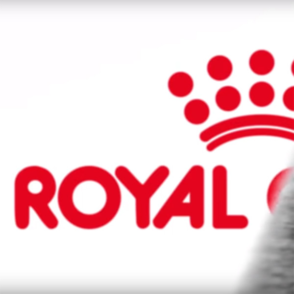 Royal Canin  |  Spot