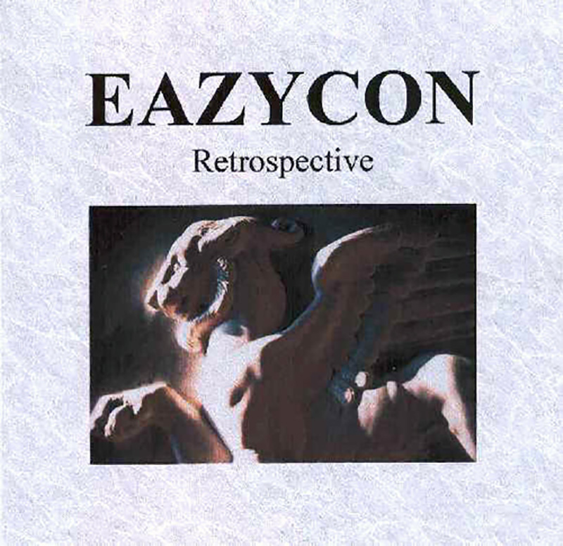 Eazycon - Retrospective